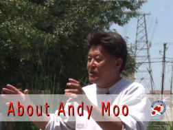 About Andrews Koi International, Andy Moo